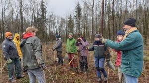 Waldschutz - die Wälder in Deiner Heimat zu schützen