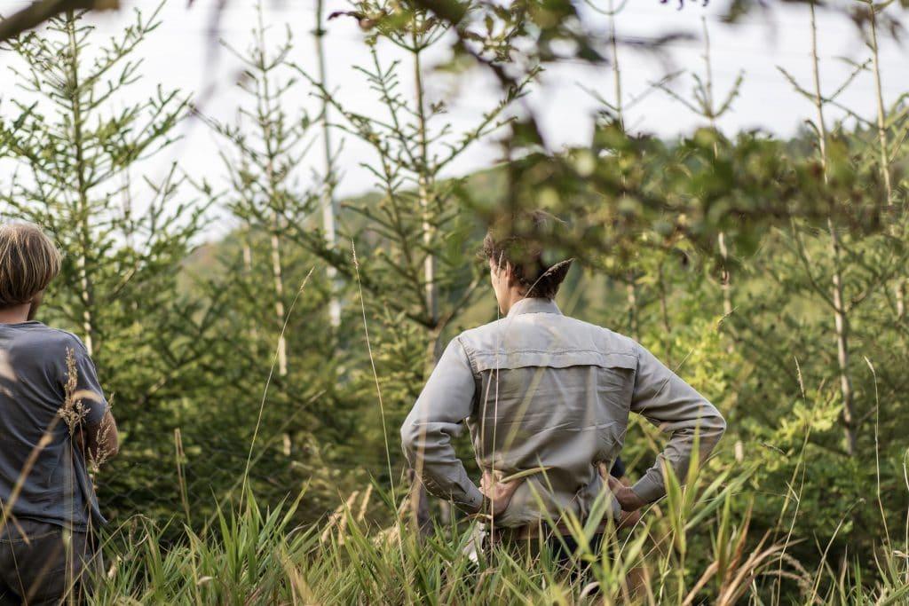Waldbauern Konzept